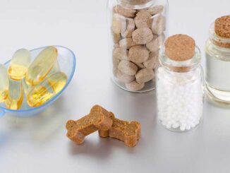 several supplements including bone-shaped items
