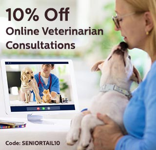 woman with dog in online consultation